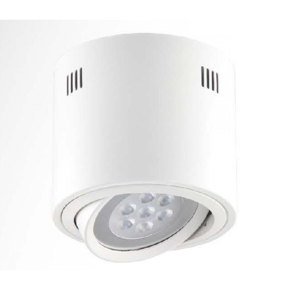 #1322燈杯可調角度式LED白色吸頂筒燈