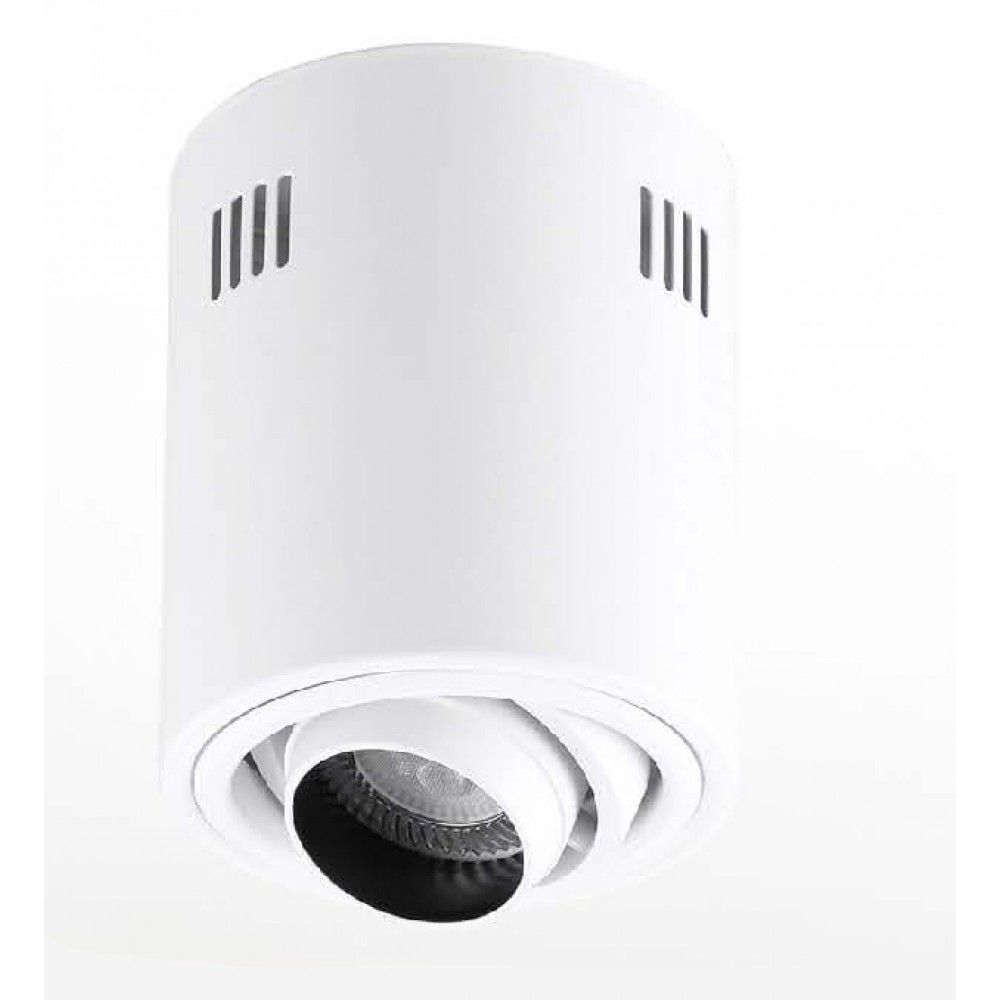 #1326可調角度式LED防眩光吸頂筒燈